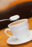 Pour sugar to milk coffee of classical white cup royalty free stock photos