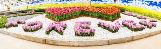 Pour toujours-avec la jacinthe fleurit l'orthographe. Photos libres de droits