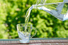 Pour water from a jug into a glass. Against a background of green foliage Stock Photography