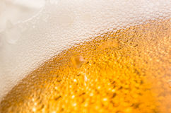 Poured beer closeup Stock Image