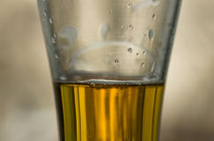 Poured beer closeup Royalty Free Stock Photography