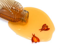 Poured Honey and Bath Bees. Golden honey poured out of a bottle enjoyed by bath bees on a white background Stock Images
