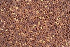 Poured lentil stock image