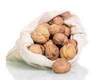 Poured out of the bag is not peeled walnuts isolated on white Stock Photo