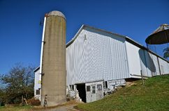 A poured silo stands tall behind a majestic old white barn Royalty Free Stock Photo
