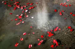 Pouring Ashes Of A Loved One Royalty Free Stock Image