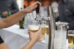 Pouring a beer Stock Photography