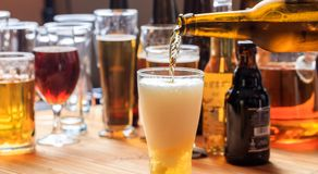 Pouring beer in a glass of beer on a pub background royalty free stock photos