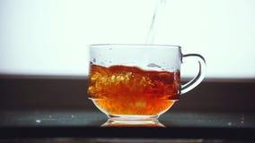 Pouring black tea to transparent glass. 1920x1080. Pouring black tea to transparent glass stock footage