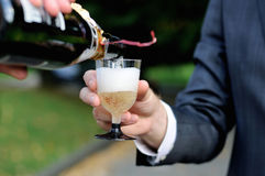 Pouring champagne into a champagne glass Royalty Free Stock Image