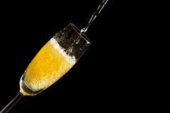 Pouring champagne with foam and bubbles. Isolated on black background Royalty Free Stock Images