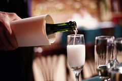 Pouring champagne into a glass. Waiter serving champagne in glasses swing stock photo