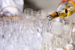 Pouring champagne into a glasses Royalty Free Stock Photos