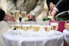 Pouring champagne into a glasses Royalty Free Stock Image
