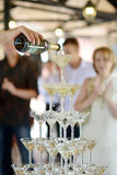 Pouring champagne into glasses Royalty Free Stock Image