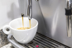 Pouring a coffee espresso on a machine in a white mug Royalty Free Stock Image