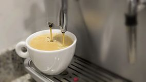 Pouring a coffee espresso on a machine in a white mug Stock Photography