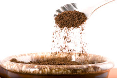 Pouring coffee grounds. Royalty Free Stock Photos