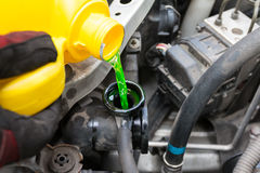 Pouring coolant. Mechanic pouring coolant into intake Royalty Free Stock Photo