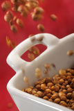 Pouring coriander seeds into a bowl Royalty Free Stock Photography