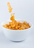 Pouring corn flakes. Corn flakes falling into a bowl of morning cereal Stock Photos
