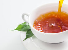 Pouring a cup of refreshing tea Stock Photography