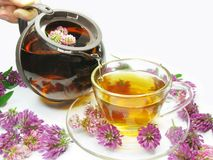 Pouring floral tea into cup Stock Photos
