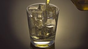 Pouring Glass of scotch whiskey stock video footage
