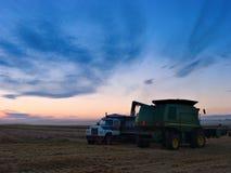 Pouring Grain Stock Photos