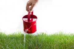 Pouring grass Royalty Free Stock Images