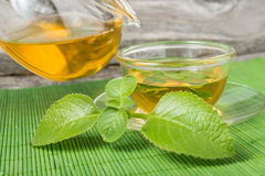 Pouring green tea into cup with mint leaves. Stock Images