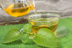 Pouring green tea into cup with mint leaves. Stock Photography