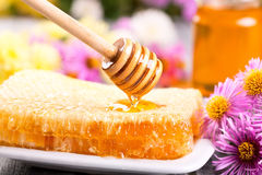 Pouring honey stock photography
