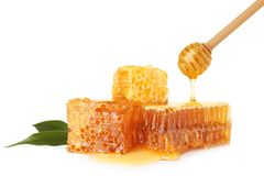 Pouring honey onto fresh combs stock images