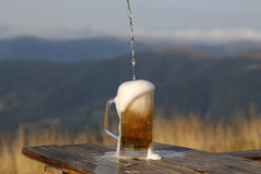 Pouring lager beer Royalty Free Stock Photography