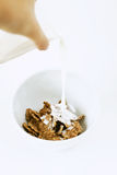 Pouring milk into a bowl with cornflakes. On white background Royalty Free Stock Photo