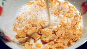 Pouring milk into a bowl with cornflakes stock video