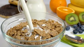 Pouring milk on cereals flakes for breakfast in slow motion stock video footage