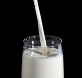Pouring Milk in Glass Stock Images