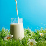 Pouring milk in a glass Royalty Free Stock Photos
