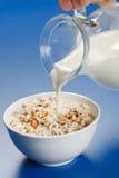 Pouring milk over wheat popped flakes. Milk being poured from jug over popped wheat flakes Royalty Free Stock Photo