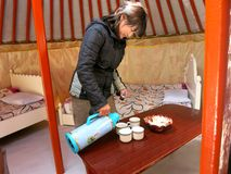 Pouring Milk Tea -- Mongolian Cultural Photo, Food and Drink. A Mongolian woman pours milk tea inside a Mongolian ger tent royalty free stock image