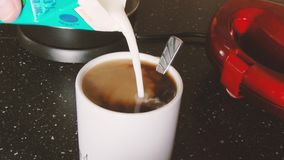 Pouring milk into a white cup with a instant coffee. stock video