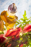 Pouring olive oil on Bresaola Salad Royalty Free Stock Photography