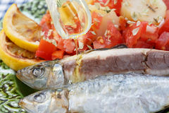 Pouring olive oil in very fresh sardines Stock Photo
