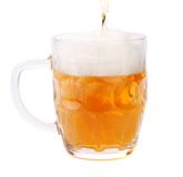 Pouring a pint of beer, isolated on white. Royalty Free Stock Photo