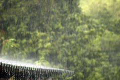 Pouring rain Royalty Free Stock Images