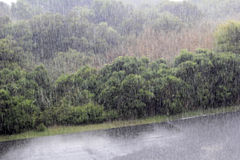 Pouring Rain in Caswell Beach, NC. Heavy rain storm pouring over a road and fields with foliage in Caswell Beach, North Carolina. High view of rain pouring in a stock image