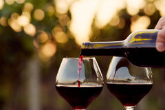 Free Pouring Red Wine Royalty Free Stock Image - 59173506