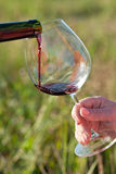 Pouring red wine into glass Stock Images